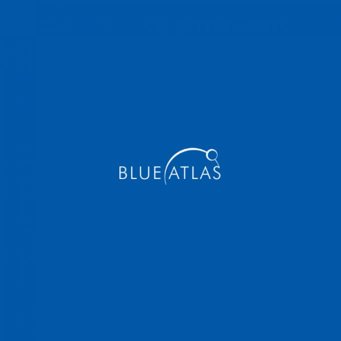 Blue Atlas Marketing – League City
